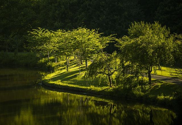 La tutela delle aree verdi