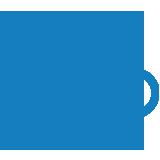 Logo Comune Web